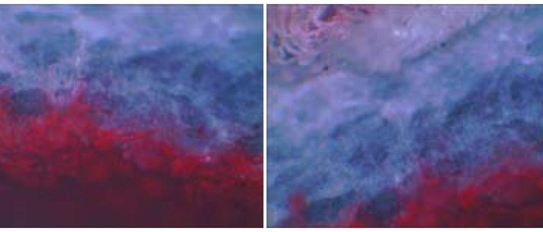بهبود رنگ پذيری چرم با استفاده از نانو رنگدانه در محيط مافوق صوت